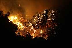 on_fire.jpg